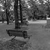 ベンチが並ぶ公園