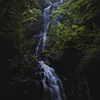 愛媛の新緑巡り「白猪の滝」