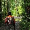 デリカでジャングルへ!どこまで行けるか・・・限界に挑戦!