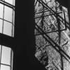 フィルム写真録 『北欧紀行 Ⅱ』