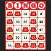 【ポイ活】モッピービンゴ11週目100アイテムチャレンジ《実践》レッドチップでフルビンゴ