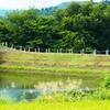 貝の沢池(新潟県長岡)