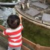 【子供が成長する旅育】1歳9ヶ月の子供と犬!大家族で行く那須旅行
