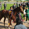 【日記】トゥザグローリーを応援しに行った青葉賞(G2) in東京競馬 2010年5月1日