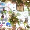 《本店1階》夏向けのオリエンタルな雰囲気漂うディスプレイ