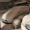 今週の大雪で、昔のことが蘇ったよ。そう、50年に一度の大雪に出会った事。