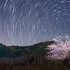 【星ぐるぐる】星の日周運動(スタートレイル)を撮影しよう!