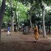 【ご報告】プラユキさんをお招きして、マインドフルネスを育む「気づきのリトリート(瞑想合宿)」を開催しました