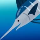 Pierce Marlin Tuna