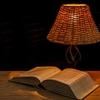 新居の照明と火災保険 不動産購入記21