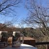 海を見つけた日〜天空カフェ「樹ガーデン」へ