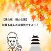 【岡山県津山市の観光スポット】桜の名所である津山城・鶴山公園♪秋には、紅葉も楽しめるよ~(^^♪