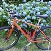 紀の川北岸自転車生活 夜勤明けサイクリングで和歌山市森林公園へ