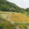 三宮からすぐ!神戸布引ハーブ園