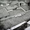 昭和の残滓 (Leica M3 + Summicron 50/2 + KODAK BW400CN)