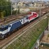 第1123列車 「 甲223 JR貨物 DD200-5の川重入場に伴う甲種輸送を狙う 」