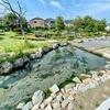 泉が森公園のイトヨ池(茨城県日立)