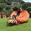 鳥取県の麒麟獅子舞の正体を探る