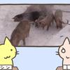 農場で火災発生、150匹の子豚が救出される
