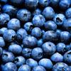 ブルーベリーの栄養価・効果・食べ方等まとめ