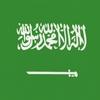 W杯開幕戦はサウジアラビアを応援します(2018W杯 ロシアvsサウジアラビア)