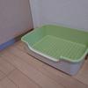 猫さん、新しいトイレですよ!