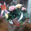 11月22日は良い夫婦の日らしいので奥さんに初めて花をプレゼントしてみた