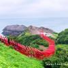 【山口県旅行記】長門市にある元乃隅神社に行ってきた!CNNで日本の最も美しい場所31選に選ばれたとこ♪♪