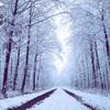 【無料/フリーBGM素材】厳かな冷たさ、異世界『Snow World』アンビエント
