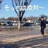 2020.12.30 【忠犬トロ】お母さんが居る方向を見てずっと動かないトロ Uno1ワンチャンネル宇野樹より