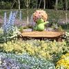 よこはまフェス、藤、ネモフィラ、、、花巡りなゴールデンウィーク