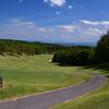 『史果と良兼が初の親子タッグ 川岸家が挑む「全米女子オープン」』を読んで  ゴルフの雑談