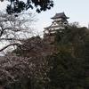 犬山城お花見遊覧船と美濃の国桜の名所めぐり