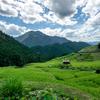 和歌山県の絶景、日本一の棚田景観とも言われる丸山千枚田へ。よりみち多め。