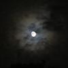 今夕のご臨在 ~すてきな月です