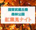【国営武蔵丘陵森林公園】『紅葉見ナイト』を見に行ってきた《埼玉・イベント》