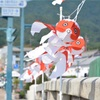 Goldfish Lantern Fes!  ~金魚ちょうちん祭り~