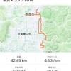 奈良マラソン2019参戦記