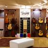 Taylor Guitarの魅力
