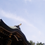 「遠隔ご参加募集☆新年の精霊のお茶会~江ノ島」 ご案内