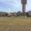 神奈川県で子供を遊ばせる無料施設。