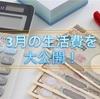 4人家族、30万円の生活費を大公開!!【3月】