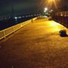 安城店 釣場調査 お手軽♪ 夜の碧南海釣り公園