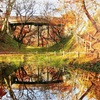 「紅葉が綺麗」高遠城址公園「もみじ祭り」と「高遠そば」新そばまつり