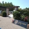 『初夏の北海道に花とハーブ訪ねて』・・・NHK学園国内スクーリング 1