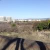 味千拉麺からの大阪城公園。梅林散策。大阪市の旅