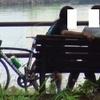 自転車だなんて聞いてないよぉ。。
