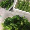 作り置き野菜 ブロッコリー・アスパラ・ほうれん草(茹でるだけ)楽チン