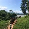 【世界一周】ラオス(ルアンパバーン)の滞在費用やら観光やらグルメまとめ