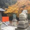 秋の京都旅行2017 1日目・その3